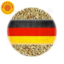 Weyermann® Light Munich Malt Type 1