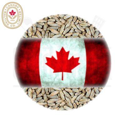 Canada Malting Rye Malt