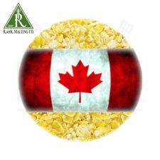 OIO Flaked Corn