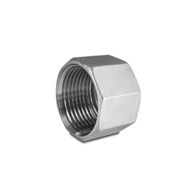 """This Stainless Steel 1/2"""" NPT Hex Cap"""